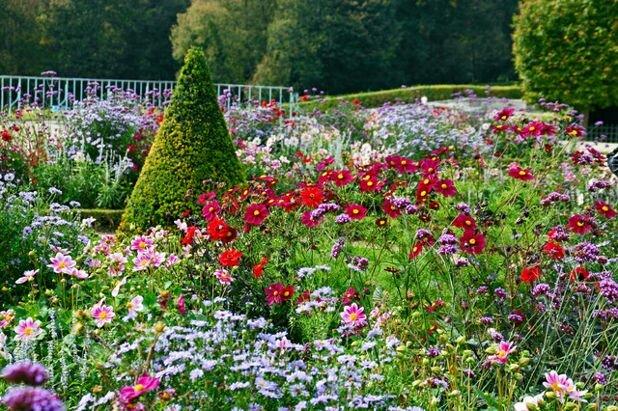 Желание видеть свои сады необычными+